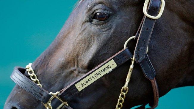 Derby Winner Always Dreaming Gallops Smoothly for Preakness