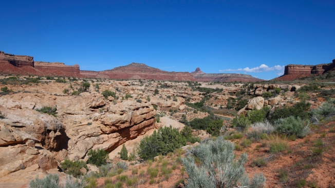 US Interior Chief Urges Shrinking 4 National Monuments in West: Memo