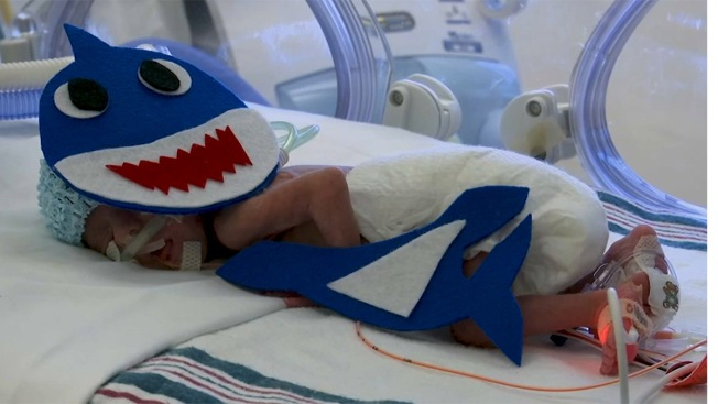 Washington Nationals' Obsession With Baby Shark Drives MLB Store Sales During World Series