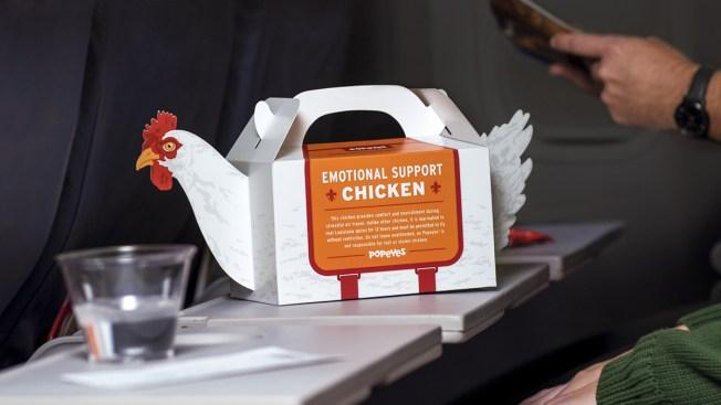[NATL] Wildest Food Crazes: Emotional Support Chicken