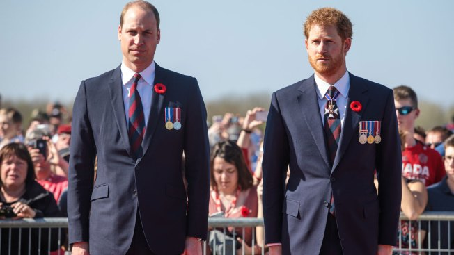 Princes William and Harry to attend service at Diana's grave