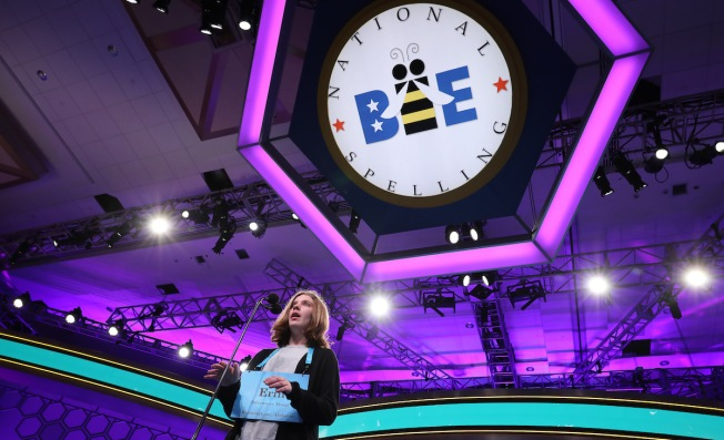 Your Complete Guide to the Scripps National Spelling Bee