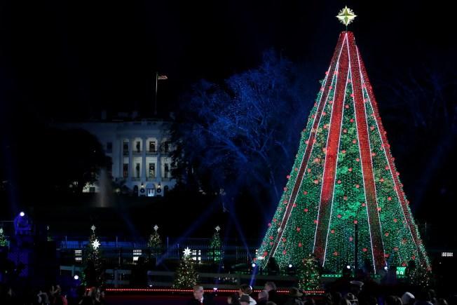 Man Climbs National Christmas Tree Outside White House